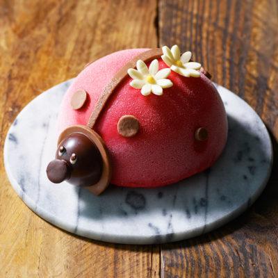 グラッシェルのアイスケーキ、コクシネル