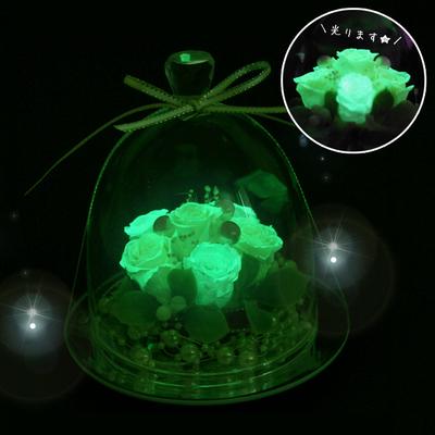 プリザーブドフラワーギフト・光るガラスドーム